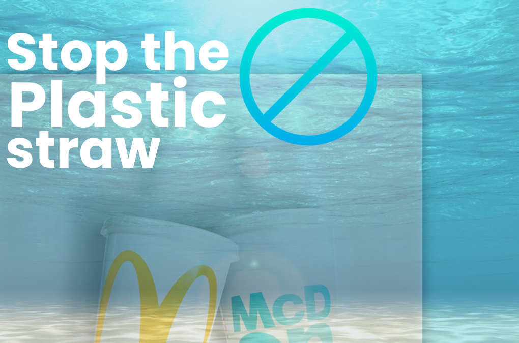 Plastic Straws – We think not…